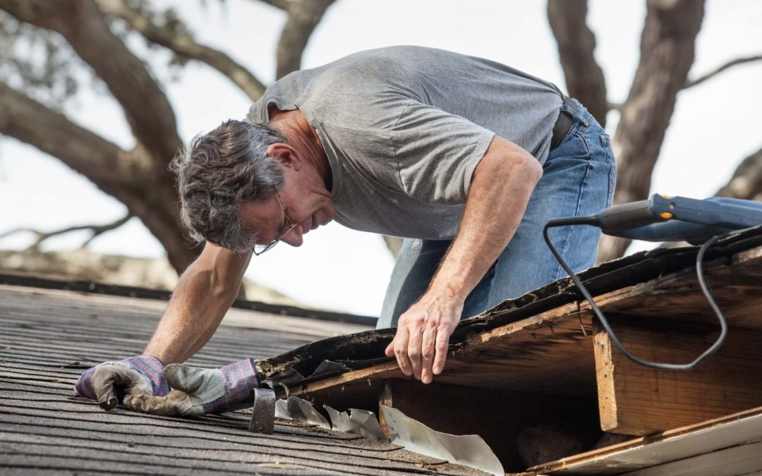 home maintenance services include regular roof inspections
